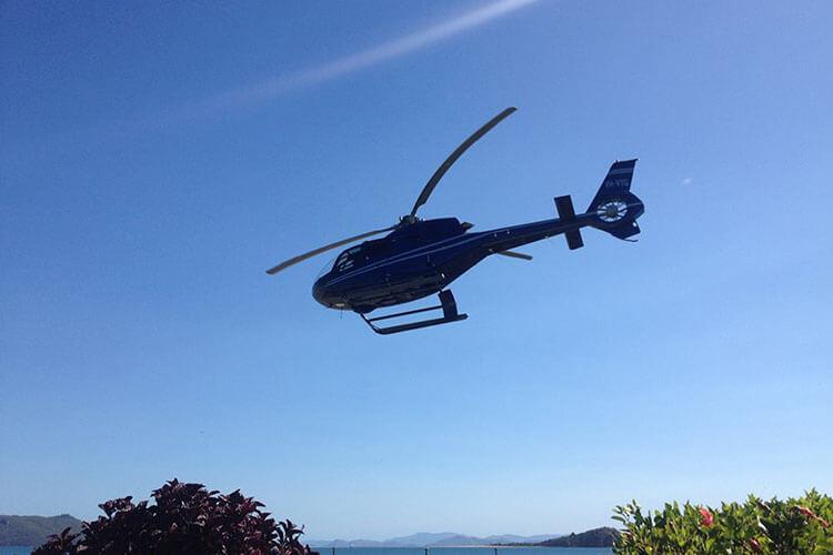 reefworld-fly-cruise-2